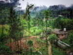 Eshab Homestay - KHIM (Bhuti Traditional House) Gallery Thumbnail Photos
