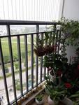 Alisa's Home - Apartment in Gamuda Gardens Urban Gallery Thumbnail Photos