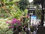 Maya Cottage Kg Tehel Gallery Thumbnail Photos