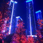 City Of Light Nearby I-City ,Jakel & UITM Gallery Thumbnail Photos