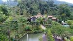 Fifty4Ferns Resort Janda Baik Gallery Thumbnail Photos