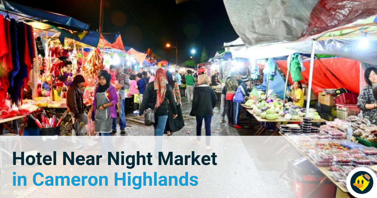 6 Best Hotels in Cameron Highland Near Brinchang Night Market Featured Image